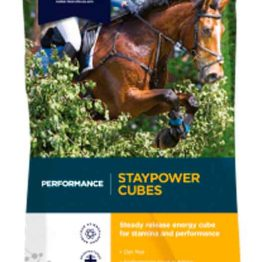 DODSON & HORRELL STAYPOWER CUBES