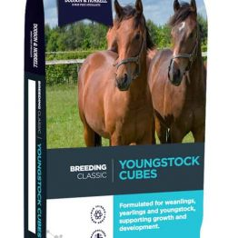 Dodson & Horrell Youngstock Cubes