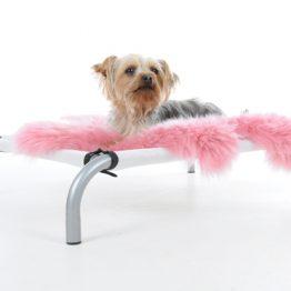 Hondenstretcher Small zelf samen te stellen