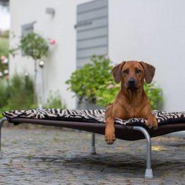 for Medium HiK9 Dog Bed